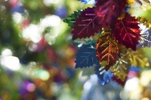 Loofhuttenfeest: 3 redenen om blij te zijn